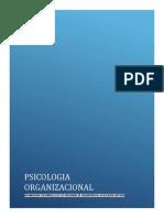 Programa Asignatura Psicologia Organizacional