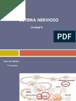 Sistema Nervioso letizumo.pdf