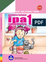 IPA 1