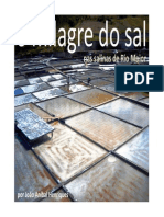 O Milagre do Sal em Rio Maior - por João Aníbal Henriques