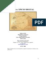 18 Ápices Digital.doc