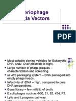 KK - Bacteriophage Lambda Vectors