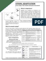 evolution worksheet - adaptation