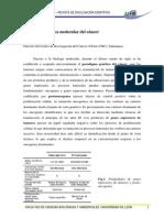 Páginas DesdeAmbioCiencias01
