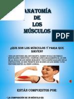 Expo 1 Musculos Del Cuerpo Humano