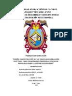 Perfilde Investigacio de Tesis II 2013