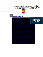 la ayahuasca planta magica