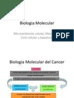 Biol. Mol. Del Cancer