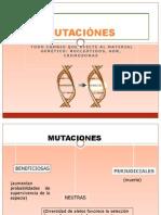 MUTACIONES 2