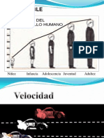 Clase Variables