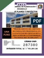 PIP Mejoramiento Del Servicio de Formacion Profesional en La Facultad de Ciencias de La Educacion de La Universidad Nacional Del Altiplano