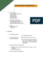 01 - Aula 01 - Teoria Geral Dos Direitos Fundamentais