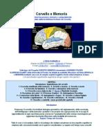Manzelli Paolo - Cervello e Memoria