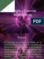 Energia y Calorias Alimentarias 3