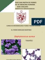 Microbiologia - 3ra. Semana.ppt