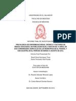 Informe Final Completo.pdf