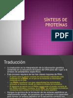 8-SintesisdeProteinasDEGENERADO