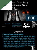 Adrenal Cortex Case Study