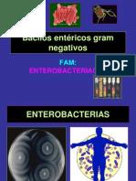 10.- ENTEROBACTERIAS