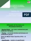 Biomassa - Parte 2