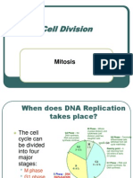 Cell Division - Mitosis