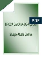 Broca Da Cana