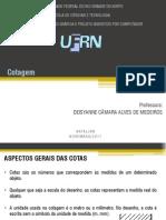 AULA 07-COTAGEM.pdf