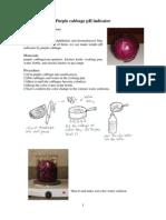 7 Purple Cabbage Ph Indicator