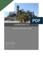 Proceso Caprolactama
