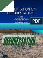 Presentation on ' Deforestation '