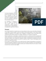 Evaporador.pdf
