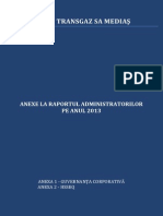Anexe La Raportul Administratorilor 2013 28-04-2014