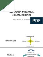 aula GESTÃO DA MUDANÇA ORGANIZACIONAL (1).pdf