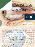 Fisica de La Vision 2013