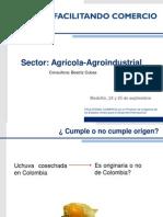 Aplicacion de Normas de Origen Con EeUU Para El Sector Agroindustrial