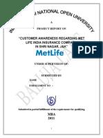 MBA Marketing Report 2011