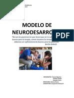 Informe+modelo+neurodesarrollo (2)
