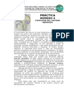 Plan de Practica 11