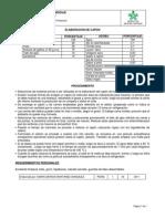 ELABORACI+ôN DE CAP+ôN2011