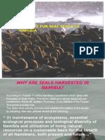 Seal Alert Min