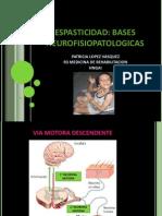 Neurofisiologia-Espasticidad