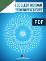 La Nucleoelectricidad - Reporte Final