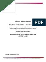 Informe Final Auditorías y Caracterización Del Sector Aves y Cerdos