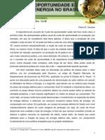 Texto Custo de Oportunidade e Pre c3a7os de Energia No Brasil 2011