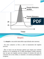 2011-3medio-sinapsis-120427233102-phpapp01