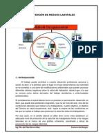 PREVENCIÓN RIESGOS LABORALES.pdf