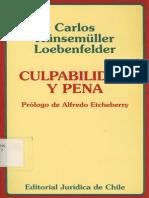 Penal Culpabilidad y Pena Carlos Kunsemuller
