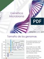 Genetic a Micro Biana