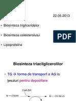 TG Colesterol 2013