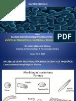Bacilos Gramnegativos Exigente